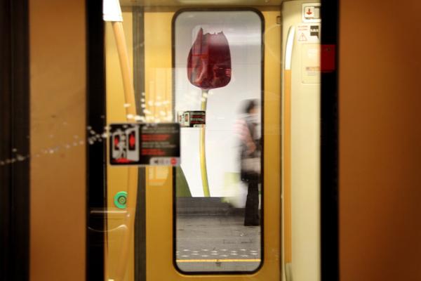 Brussels, Sint-Katelijne/Saint-Catherine metro station, 2009-2010