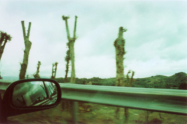Sicily, Etna area, 2002
